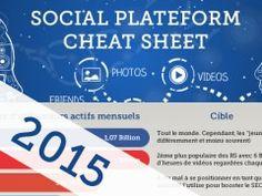 Infographie : Cartographie des réseaux sociaux ( Version Française 2015)