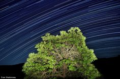 """Learn how to capture amazing """"star trail"""" long exposure shots like this."""