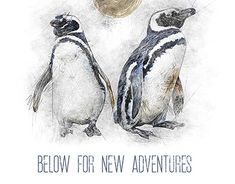 New Adventures, New Work, Behance, Photoshop, Profile, Graphic Design, Gallery, Check, User Profile