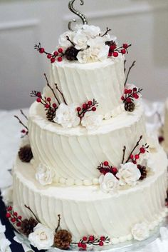 Rustic winter wedding cake with pinecones, cranberries and roses