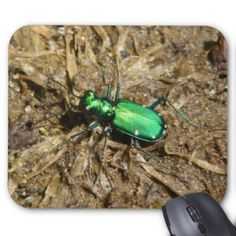 Beetle Mousepad. Mouse Pad