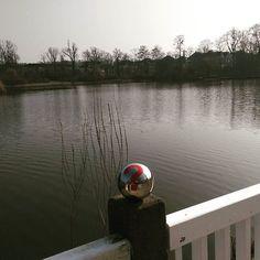 #MOTORDIALOG lässt heute die Enten fliegen - über das Eis! Wir sind am Teichhaus in Bad Nauheim und bereiten 25 Jahre amk vor. Die #InstaKugel ist mit dabei.  #See #Ente #instadaily #sea #BadNauheim
