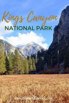 Guide and tips to visiting Kings Canyon National Park in California, USA with kids. See the continent's deepest canyon, waterfalls, meadows and the nation's Christmas tree.  This is Zumwalt Meadows.