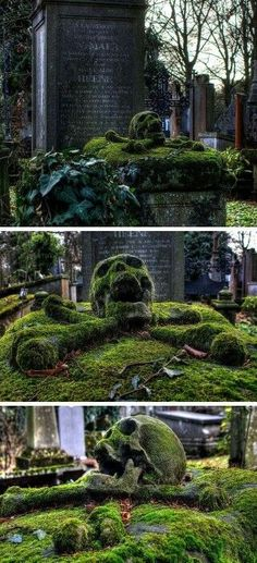 Let be how the moss has grown over this skull and crossbones. Beautiful photo of a tombstone in a cemetery. I didn't take the pic, but GothicGourdGirl loves it! Memento Mori, Grave Headstones, Old Cemeteries, Graveyards, Cemetery Art, Cemetery Monuments, Skull Art, Abandoned Places, Creepy