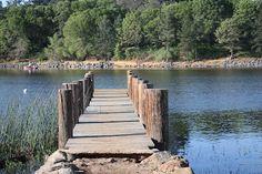 Campground reviews: Lake Cuyamaca, CA