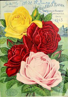 1913 - Miss Ella V. Baines the woman florist Springfield, Ohio : - Biodiversity Heritage Library. Decoupage Vintage, Red And Yellow Roses, Red Roses, Beautiful Flowers Wallpapers, Beautiful Roses, Botanical Flowers, Botanical Prints, Garden Labels, Vintage Seed Packets
