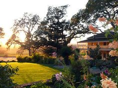 Beltane Ranch- hopefully this is where we will be on our thrid anniversary!
