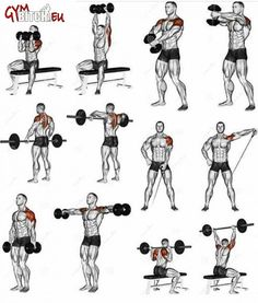 Best Shoulder Fitness Workouts & Exercises - Healthy Body Train