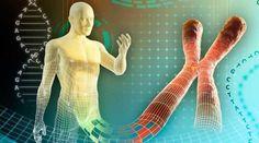 Ruští vědci dokázali, že DNA lze přeprogramovat slovy a frekvencemi Dna, Memory Process, Chances Of Pregnancy, Human Genome, Best Brains, Healthy Brain, Creative Icon, Male Figure, Getting Pregnant