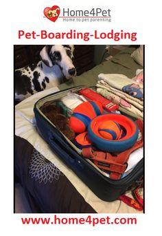 http://home4pet.com/Pet-Services/Pet-Boarding-Lodging