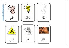 Qur'anic Arabic verbs Flashcards - free pdf at Arabic Adventures Arabic Verbs, Quran Arabic, Arabic Phrases, Buy Textbooks, Three Letter Words, Learn Arabic Online, Improve Your Vocabulary, Ramadan Activities, Arabic Lessons