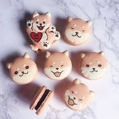 Shiba inu macarons // We're left with limited slots for the month of February! Do send in your orders early 🐶👌🏻 Whatsapp 91077142 Macaroons, Macaron Cookies, Shortbread Cookies, Dessert Kawaii, Cute Food, Yummy Food, Kreative Desserts, Cute Baking, Pear Cake