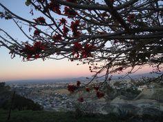 Maravillosas vistas panoramicas desde Jardín de Fiestas Calypso Gardens!  localizado en la delegación de Playas de Tijuana, Baja California, México!