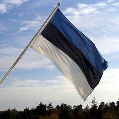 Photo of the Estonian flag Hetalia Latvia, People Around The World, Around The Worlds, Estonia Flag, Estonia Travel, Flag Photo, Flags Of The World, Urban Life, Europe