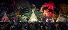 Splendour in the Grass arts & music fest in Australia Splendour In The Grass, Entertainment Sites, Music Fest, Byron Bay, Art Music, Beautiful Flowers, Australia, Culture, Entertaining