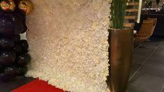Vi levere denne vakre blomsterveggen til Som Spa Hotell sitt julebord. Baptism Party, Wedding Ceremony Decorations, Flower Wall, Summer Wedding, Wedding Flowers, Spa, Christening Party, Floral Wall, Wedding Decor