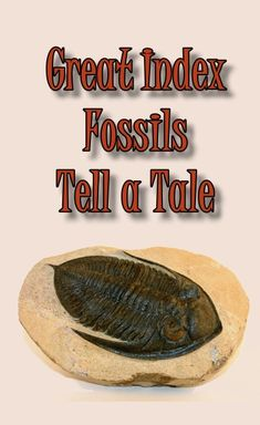 Great Index Fossils Tell a Tale