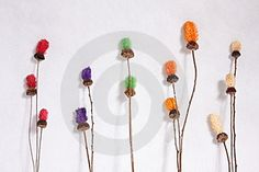Dry Flower Free Stock Image