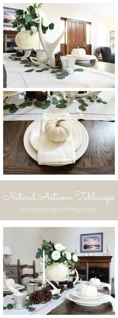 Simple, natural, and inexpensive tablescape for your Autumn decor this season!