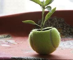Match Point--tennis ball into planter