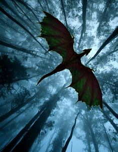 forest dragon in flight - Drachen - Animals Fantasy Artwork, Character Inspiration Fantasy, Arte Game Of Thrones, Dragon Artwork, Dragon Pictures, Magical Creatures, Fantasy World, Fantasy Town, Fantasy Demon