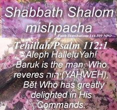 Our tiqvah is YAHWEH in YAHSHUA ha'Mashiah. HalleluYAH! Shabbath Shalom