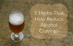 5 Herbs That Help Reduce Alcoholism Cravings - http://www.naturalhealthideas.info/r/natural-alcoholism-remedy