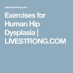 Exercises for Human Hip Dysplasia | LIVESTRONG.COM