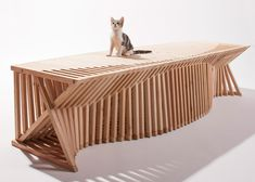 """Architects for Animals """"Giving Shelter"""" - Fix Nation"""