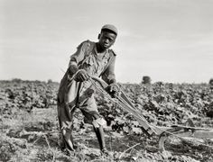 THIRTEEN-YEAR-OLD SHARE CROPPER, AMERICUS, GEORGIA by Dorothea Lange
