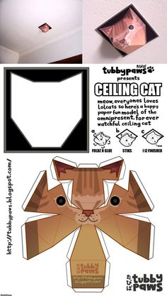 So the guys put one of these up at the office in black/grey. Completely creeped me out when I walked by and thought they had put in cameras...no worries, just a ceiling cat...