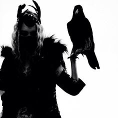Raven at end od world                      http://survivalcoursesinfo.com/