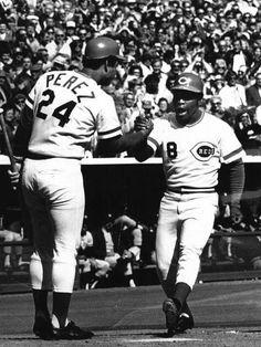 Cincinnati Reds Baseball, Mlb, Champion, Baseball Cards, Sports, Universe, Vintage, Hs Sports, Cosmos