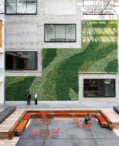 Vertical green wall as part of exterior architecture, terrace Architecture Design, Green Architecture, Landscape Architecture, Landscape Design, Interior Design Magazine, Vertical Green Wall, Green Facade, Concrete Interiors, Vertical Farming