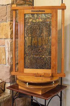 Demonstration Bee hive.