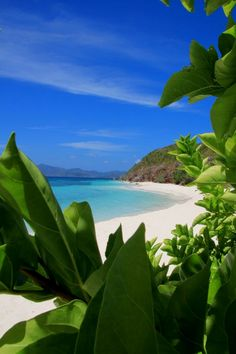 The Beauty of the Philippines! Coron- Palawan PARADISE ON EARTH!  Philippines Vacaciones Avoir plus d'informations sur notre site   https://storelatina.com/philippines/travelling #Філіппіни #ֆիլիպիններ #филиппҳо #Placestovisit