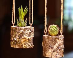 Hanging Planter Indoors Rustic Hanging Succulent Planter Log Planter Cactus Succulent Holder Hanging Plant Pots Gifts for Her Air Plant Gift
