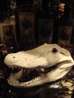 Old Ghostly Whitewashed Gator Head--for my cabinet of curiosities?