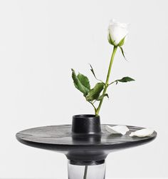 A vase's function is to hold flowers upright for noticeability while providing a source of water for longevity. The beauty of flowers held inside a vase is indisputably instant.