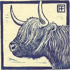 Highland Coo Linocut