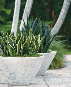 #ClippedOnIssuu from Garden design 2009 04 april
