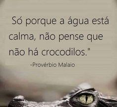 Post  #: Provérbio do dia !
