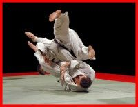 """the article is called """"What is Jiu jitsu""""...     I was taught that it is swimming on dry ground & chess on the mat..."""