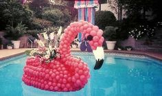 Pink Flamingos Made of Balloons Floating in a Pool. Yes.