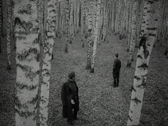 "Still from Andrei Tarkovsky's ""Ivan's Childhood"""