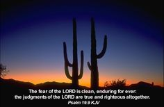 The fear of the LORD is clean, enduring for ever: the judgments of the LORD are true and righteous altogether. Psalm 19:9
