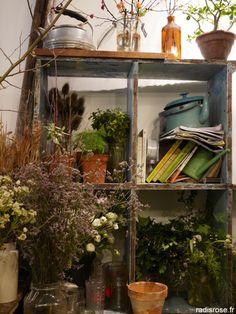 L'épicerie végétale est un petit bout de verdure dans le 11ème. Une boutique qui déborde de fruits, de légumes bios et de plantes sur le trottoir. Un peu de nature en pleine ville qui fait du bien par radi