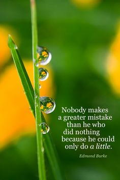 Nobody makes a greater mistake than he who did nothing because he could only do a little.