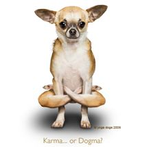 Karma...or Dogma?