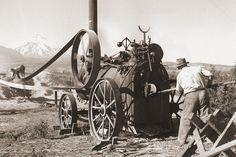 akg-images: Bis in die zweite Hälfte des 20. Jahrhunderts wurden Dampfmaschinen vor allem in ländlichen Gebieten genutzt. Im Bild: dampfbetriebener Mähdrescher in Chile (1954).